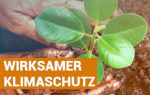 Read more about the article KLIMAPOLITIK DER GROKO: TEUER UND WIRKUNGSLOS!